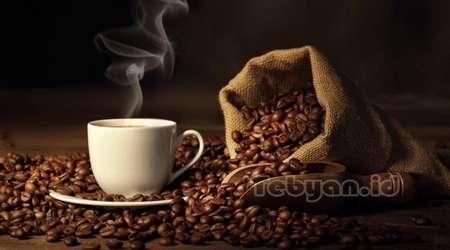 minum kopi bisa memperpanjang usia?