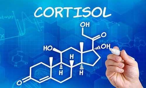 کورتیزول
