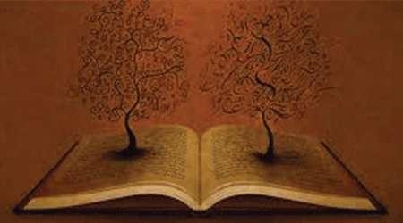 ترکیب و تجربه و دانش