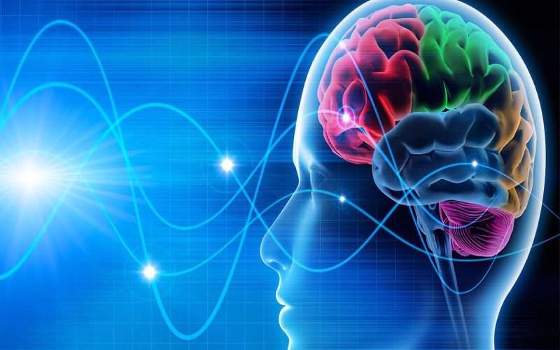 ام اس ،بیماری، سیستم عصبی مرکزی، مغز و نخاع،مشکلات بینایی، تعادل در راه رفتن،افسردگی،سلامت