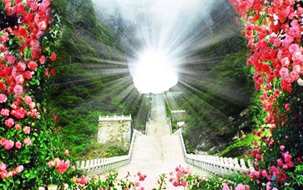 باغ، بهشت،