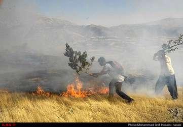 آتش سوزی در مراتع مریوان ( روستا های شارانی و مرگ)