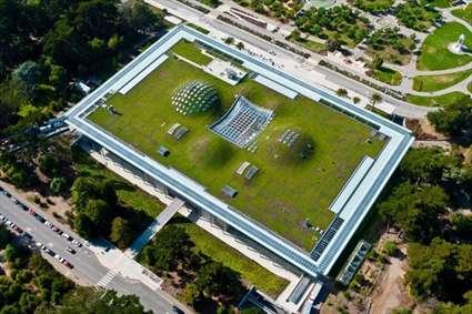 تصاویری از باغهای پشت بامی در فضای مدرن شهری