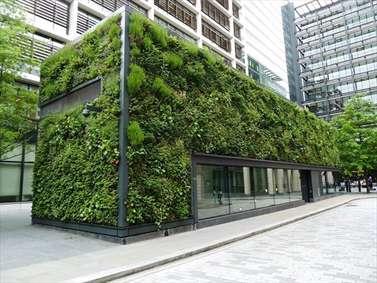 دیوارهای سبز؛ راهکاری برای نقش آفرینی بیشتر طبیعت در زندگی شهری