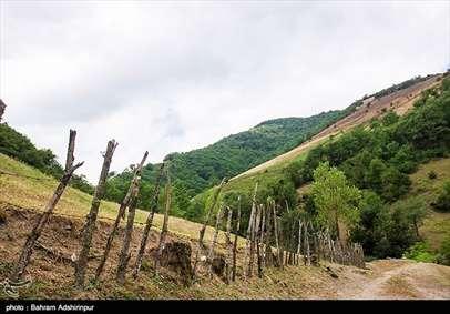 طبیعت مِشه سویی در دامنه کوه اسپیناس-آستارا