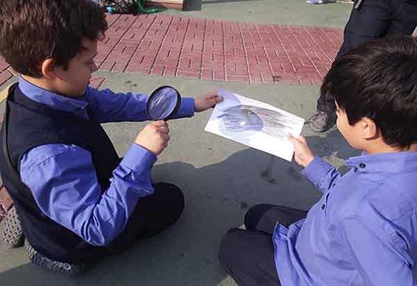 چگونه دانش آموزان را به مشاهده دقیق تر هدایت کنیم؟