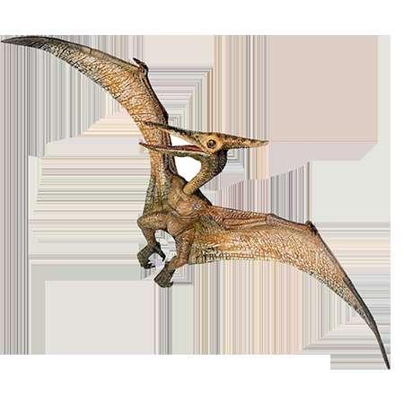 پرواز کنندگان اولیه