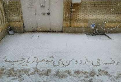 برف هنرمندانه