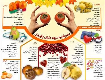 اینفوگرافیک میوه های پاییزی