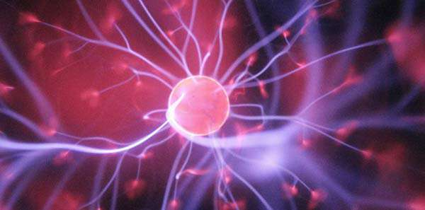 آیا فیزیک منشاء خودآگاهی است؟