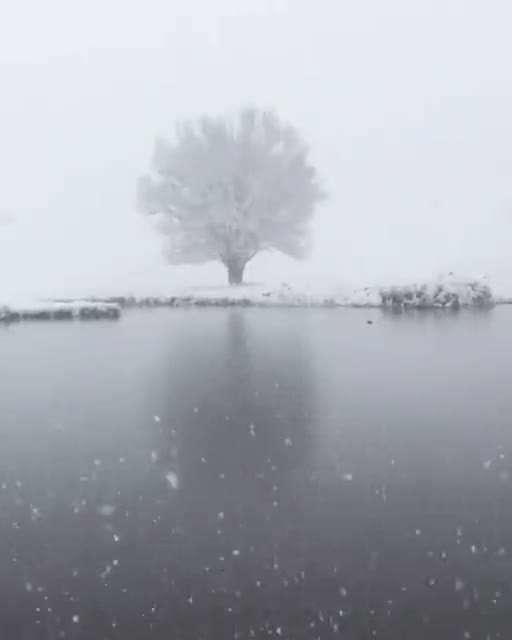 صحنه زیبای زمستانی