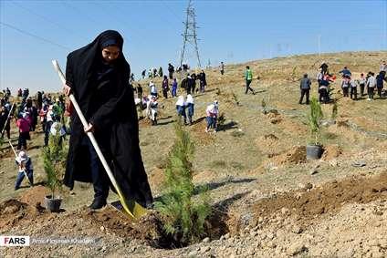 آئین روز درختکاری در البرز