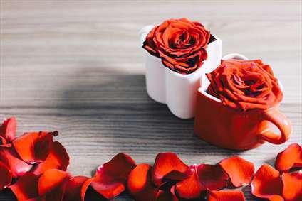 زیبایی محبت