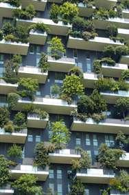 خانه ای سبز و زیبا