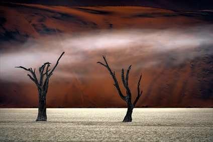 بیابانهای نامیبیا