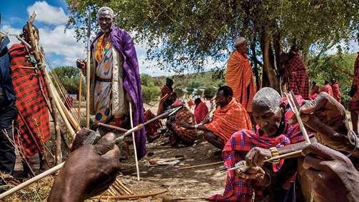 مسمومکردن حیات وحش آفریقا