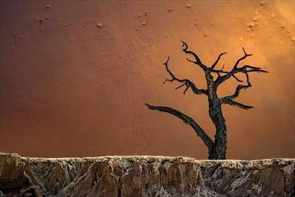 صحرای ددولی