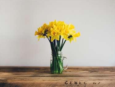دسته گل نرگس زیبا