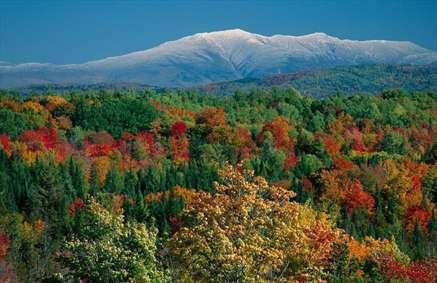 پاییزی رنگارنگ