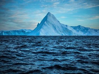 عکسی از یک کوهیخی