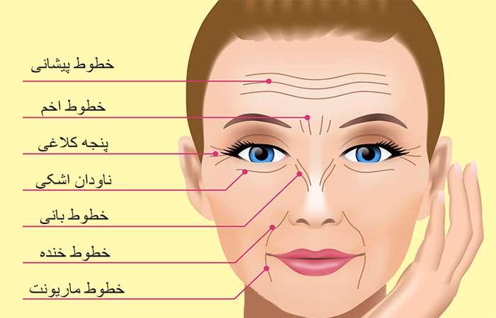 خطوط چهره