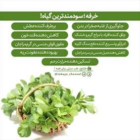خرفه، سودمندترین گیاه