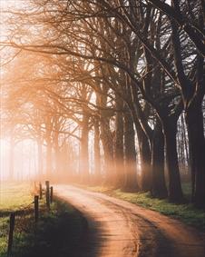 راه زیبا