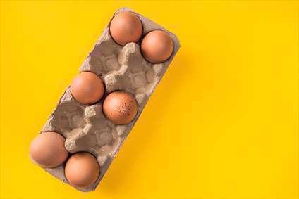 بسته تخم مرغ