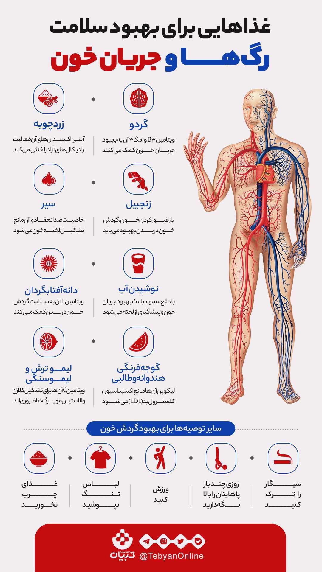 غذاها، بهبود گردش خون، بهبود رگ ها، آنتی اکسیدان ها،