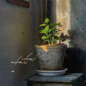 مجموعه عکس نوشته عاشقانه برای پروفایل با موضوع خدا