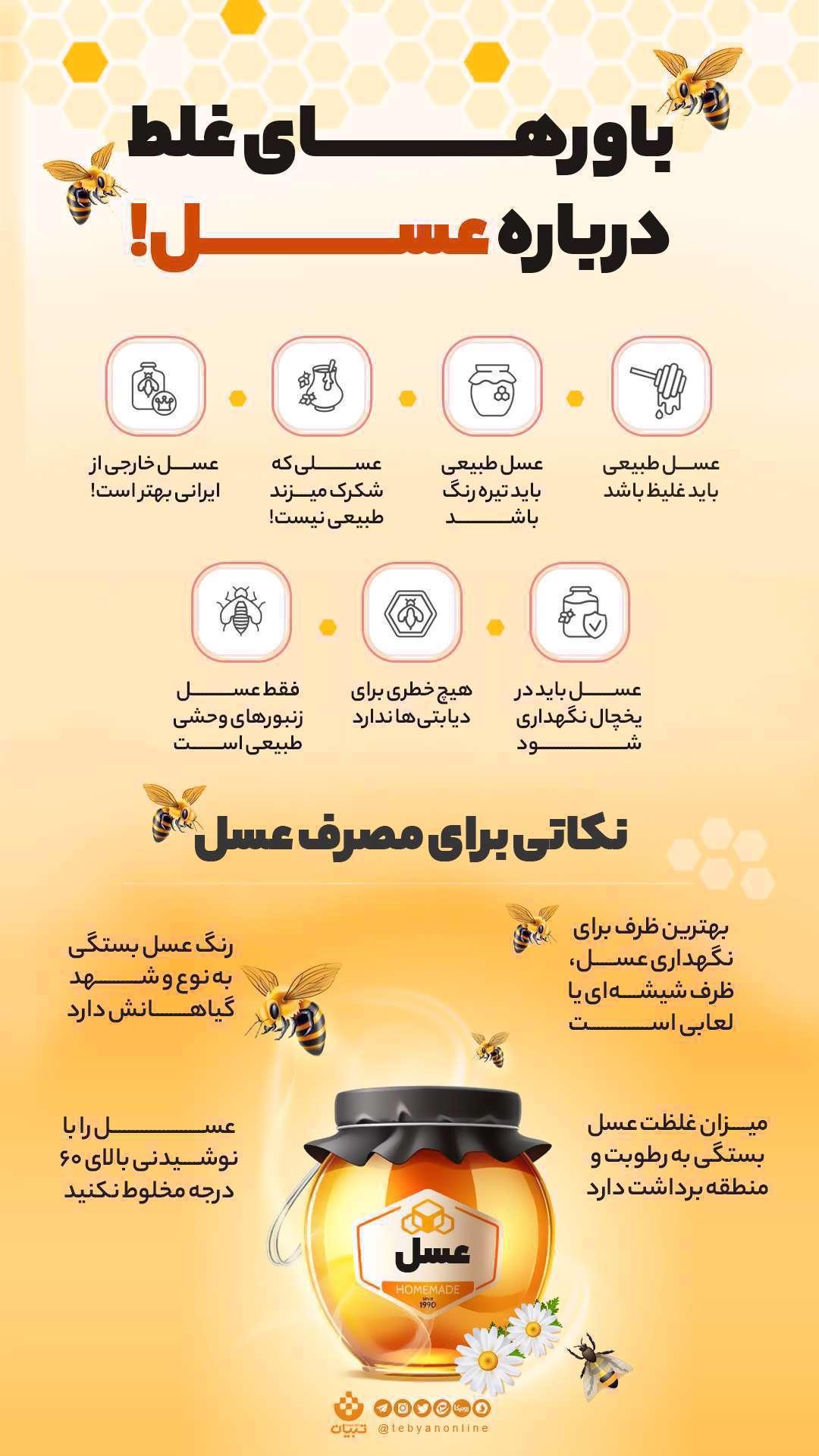 باورهای غلط درباره عسل - اینفوگرافی