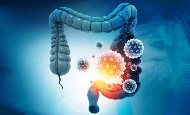 راهکارهایی برای سلامت میکروبیوم روده