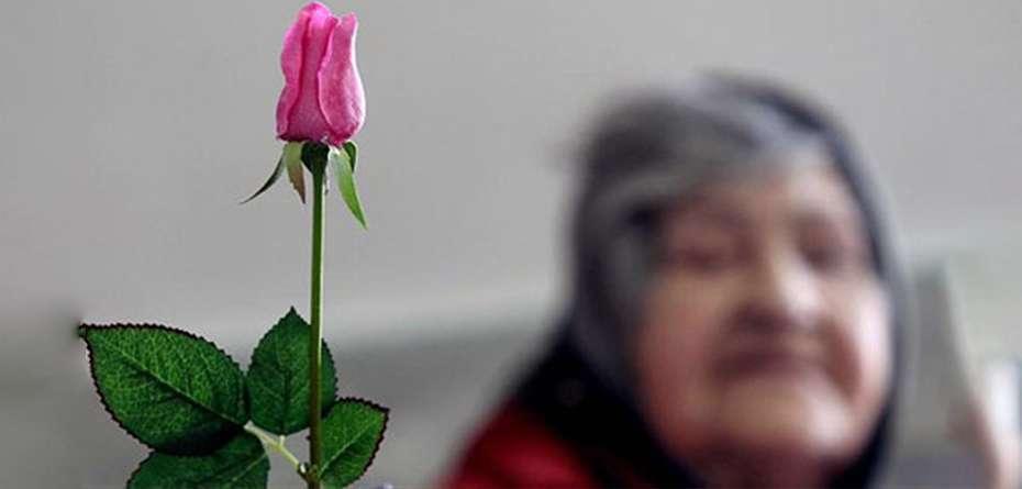 احترام به سالمند