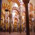 مسجد قرطبه