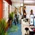 گزارش تصویری از کارمندان گوگل