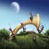دنیای مورچهها
