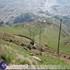 کوردستان